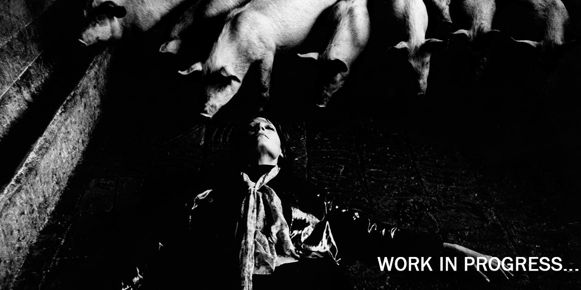workingproces_videos2